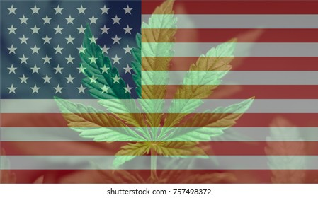 A beautiful marijuana cannabis leaf on the US flag and grass with lens illumination, a beautiful background, the concept of legalizing the cultivation of marijuana use in Medetsin recreational