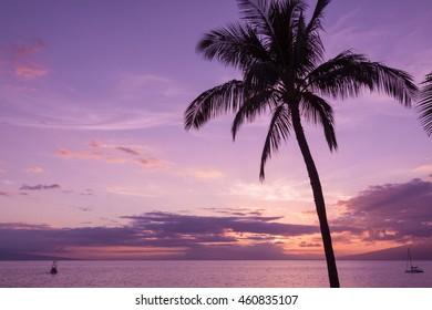 Beautiful Maui Sunset