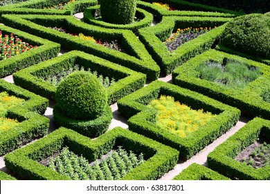 Beautiful maze garden