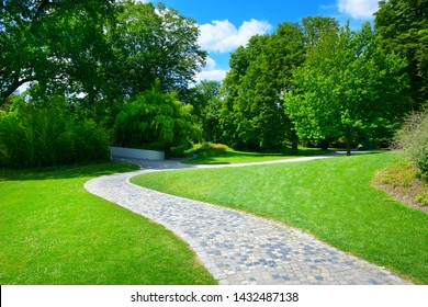 Beautiful meadow with footpath in park
