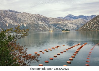 Beautiful Mediterranean landscape on cloudy autumn day. Longline culture, rope culture  mussel farm.  Montenegro, Adriatic Sea, Bay of Kotor