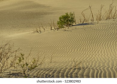 The beautiful Mesquite Flat Dunes at Stovepipe Wells, Death Valley National Park