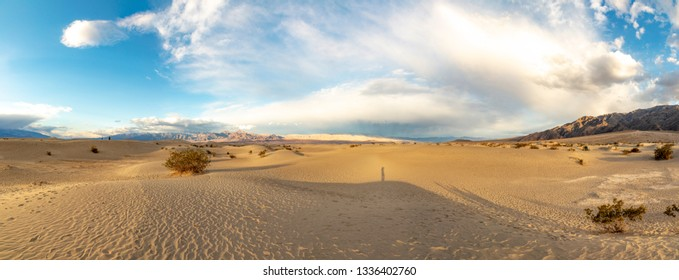 beautiful Mesquite flats in the death valley desert in sunset light