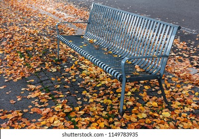 beautiful metal bench in the park