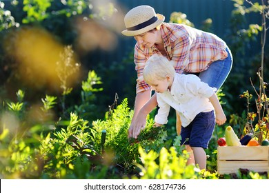 Beautiful middle aged women and her adorable little grandson enjoying harvest. Healthy family lifestyle