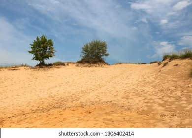 Beautiful midwest nature background. Landscape with cloudy blue sky over sand dunes at Kohler-Andrae State Park, Sheboygan area, Wisconsin, Midwest USA.
