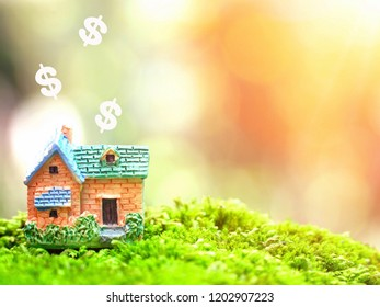 Beautiful miniature house on green yard and sunlight natural bokeh background with Dollar symbol. Real Estate, Property, Business, Financial planing Concept. Free space for any text.