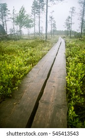 A beautiful mire landscape with a hiking path in Finland - dreamy, foggy look