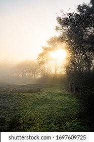 Beautiful misty foggy morning sunrise at the Westduinen in Ouddorp, the Netherlands South Holland scenic landscape