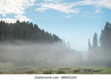 Beautiful misty mountain view just before sunrise. Humboldt County, California, USA near Orick.