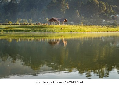 Beautiful misty sunrise over the Lake Gregory in Nuwara Ellia, Sri Lanka. Reflextion in the lake. Hourse on the lush green field.