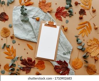 Schönes Muster mit leerer Karte, Tischausstattung mit Besteck und Geschirr auf weißem Hintergrund, Draufsicht, Restaurantmenü