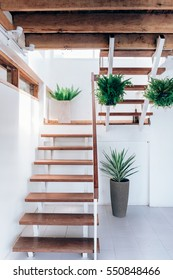 Beautiful modern wood stair and white interior, staircase in front of view.