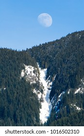 beautiful moon over blue sky and snow in forest in Whytecliff Park, West Vancouver, British Columbia
