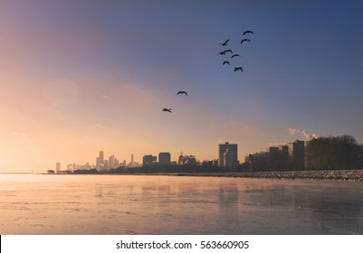 A beautiful morning arises over a harbor, where the Chicago skyline sits in the distance. A flock of birds fly through a beautiful blue and orange sky.
