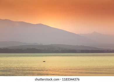 A beautiful morning landscape with ducks swimming in the mountain lake with mountains in distance. Sunset scenery in light colors. Birds in natural habitat. Tatra mountains in Slovakia, Europe.