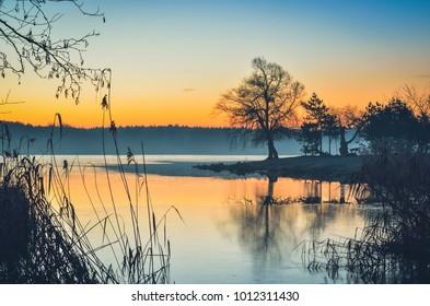 Beautiful morning landscape. Tree on the peninsula at the lake at sunrise.
