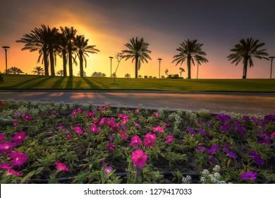 Beautiful morning light -Modon lake Dammam Saudi Arabia.