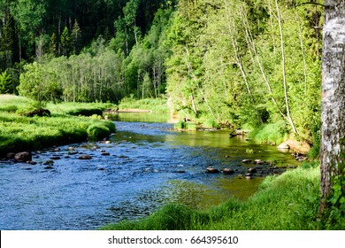 beautiful morning light over forest river of Amata, Cesis, Latvia. sandstone cliffs and green vegetation around water in summer