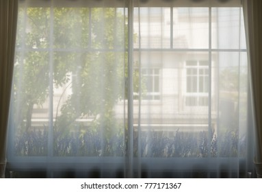 Beautiful morning light through the white curtain and windows.