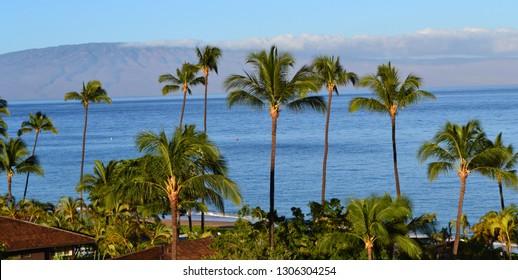 Beautiful morning in the romantic Kaanapali Beach towards Molokai in Maui Island, Hawaii