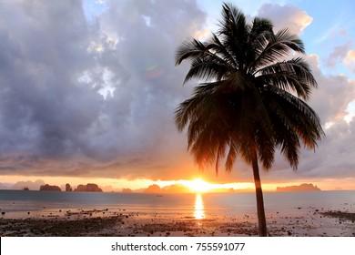 Beautiful morning with sun rises in tropical beach.