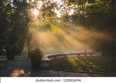 BEAUTIFUL MORNING SUNRISE IN A PARK - Gorgeous warm glowing scene of sunlight and sun rays shining through forest trees of an urban city park. Warmth of light/rays of light. Toronto, Ontario, Canada