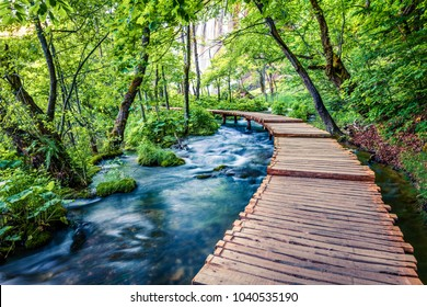 Beautiful morning view  Sunny spring scene of green forest with pure water lake. Marvelous countryside landscape of Croatia, Europe. Traveling concept background.