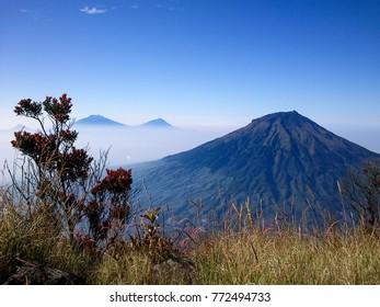 Beautiful Mount Sumbing