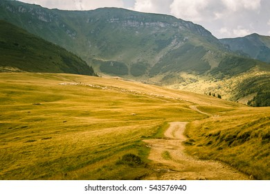 A beautiful mountain landscape in Carpathian mountains, Romania
