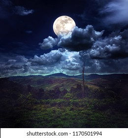Beautiful mountain landscape covered with green tree forest, amazing nature. Night sky with full moon behind partial cloudy above mountain range. Serenity background. The moon taken with my camera.