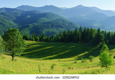 Beautiful mountain landscape with forest and meadow in summer.
