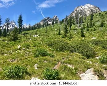 Beautiful Mountain Landscape in Grand Teton National Park, Wyoming