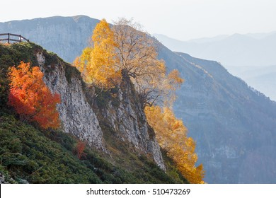 A beautiful mountain landscape. Russia, Sochi. In the mountains of the Caucasus come autumn. Vibrant fall colors of alpine meadows and foothills.