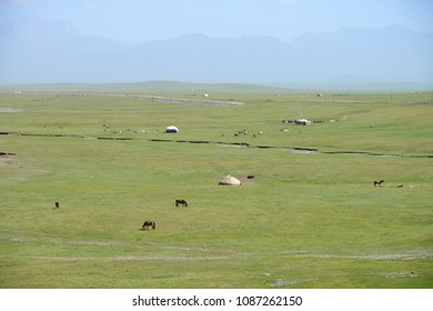 Beautiful mountain landscape with white Yurts and free running horses near Sary Tash, Kyrgyzstan