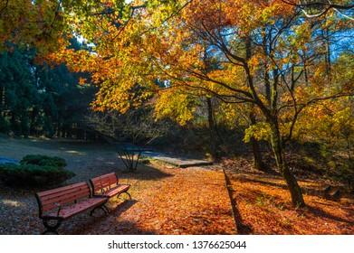 Beautiful Mountain Lu geopark landscape in late autumn