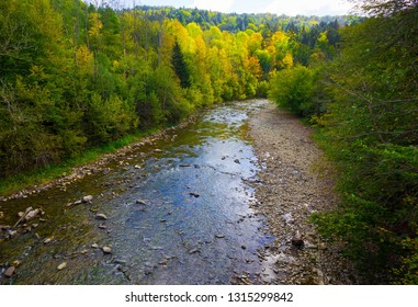 Beautiful mountain river in Bieszczady mountains in Poland. Mountain river landscape.