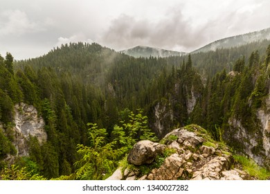 Beautiful mountain scenery in the summer, with green fir trees and rain clouds