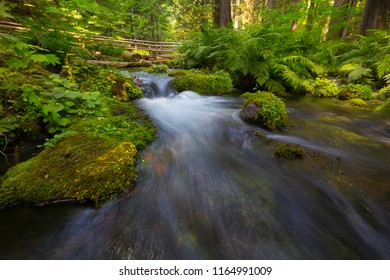 A beautiful mountain stream wtih wooden bridge in rural Oregon