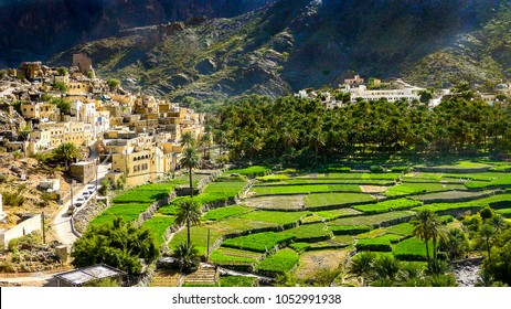 The beautiful mountain village of Balad Sayt sits in front of green fields in Wadi Bani Awf, Oman