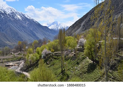 Beautiful mountains in Astore of Pakistan.The apricot blooms in a spring season.