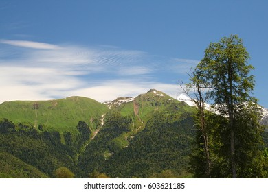 Beautiful mountains landscape with a tree and lenticular clouds on the blue sky