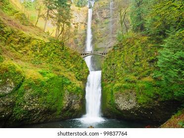 The beautiful multinomah falls