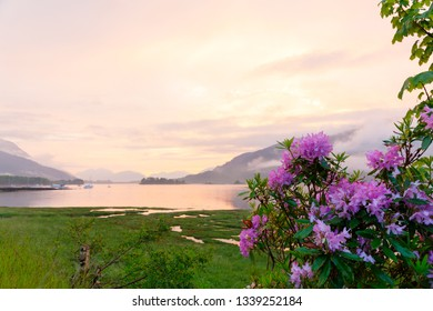 beautiful mystic sunset at glencoe and loch leven with flowers