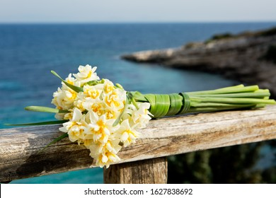 Beautiful narcissus flowers from Karaburun,İzmir. This flower also known as daffodil, daffadowndilly, narcissus, and jonquil. - Shutterstock ID 1627838692