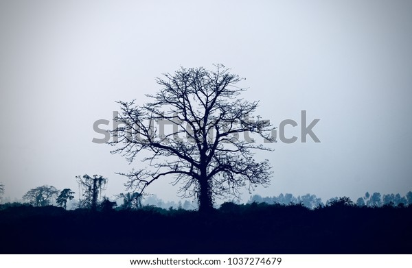 Beautiful natural abstract landscape unique stock photograph