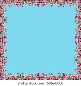 Beautiful natural background with flower magnolia for greetings (frame, postcard, spring, menu, wedding invitation, love - concept).