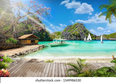 beautiful  natural beach view with trees and parquet wallpaper  - Shutterstock ID 1549986530