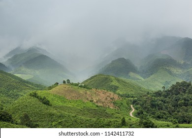 beautiful natural beauty on mountain in Nan,Khun Nan  Rice Terraces, Boklua  Nan Province, Thailand