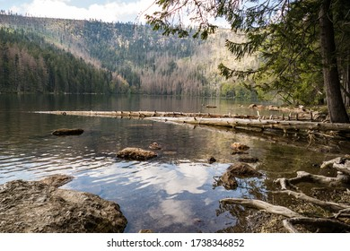 beautiful natural lake in a protected area of national park sumava in czech republic - Shutterstock ID 1738346852